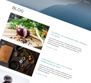 blog design by intervision lite